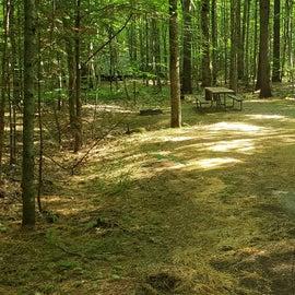 12 Campton Campground, WMNF12 Campton Campground, WMNF