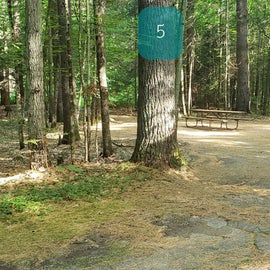 5 Campton Campground, WMNF