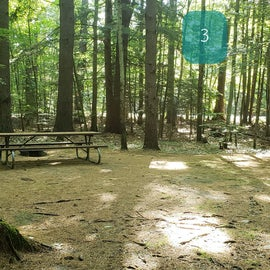 3 Campton Campground, WMNF