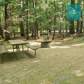 1 Campton Campground, WMNF
