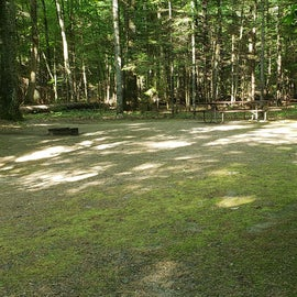 58 Campton Campground, WMNF