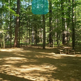 29 Campton Campground, WMNF