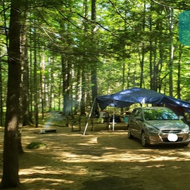 30 Campton Campground, WMNF