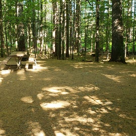 25 Campton Campground, WMNF