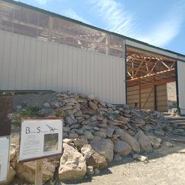 Dinosaur museum dig site
