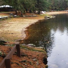 Damon Pond  Willard Brook State Forest
