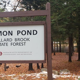Entrance to pond and campground,  Willard Brook State Forest