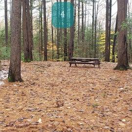 Site 4  Willard Brook State Forest