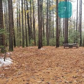 Site 7  Willard Brook State Forest