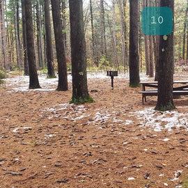 Site 10  Willard Brook State Forest
