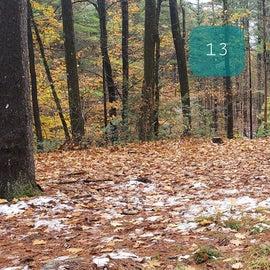 Site 13  Willard Brook State Forest