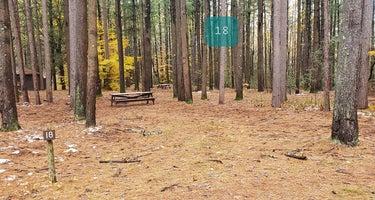 Willard Brook State Forest
