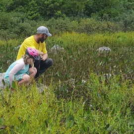 This marsh is popular with kids and adults alike for discovering nature