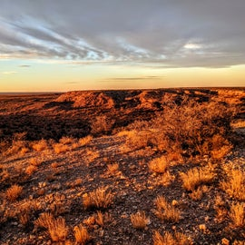 Afternoon light over the Chihuahuan Desert.