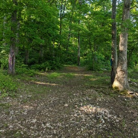 The trail from the parking lot to the lakefront sites is about 1/4 mile or so, so bring your wagon or IKEA bags.