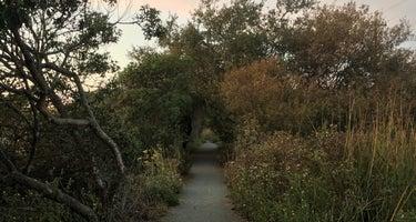 Pismo Dunes Travel Trailer Park