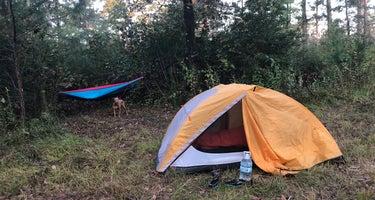 Kelly's Pond Campground: (936) 344-6205