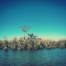 Out on the only natural lake in Texas