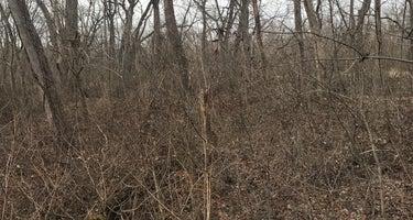 Horsepen Branch