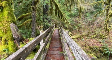 Olympic National Park/Staircase