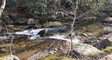 Reddies River Camping