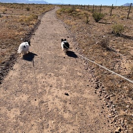 We loved their walking trails. Very Pet Friendly.