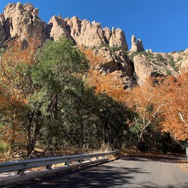 A drive in the Coronado National Forest
