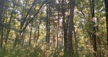 Black River/Castle Mound