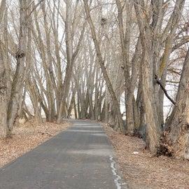 Provo Jordan River Trail behind the park