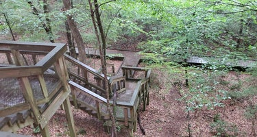 Upland - Bogue Chitto State Park