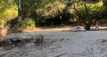 Lower Dinkey Creek Campground