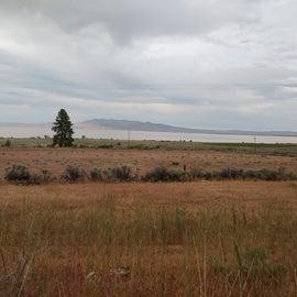 Looking across Hwy 395 to Honey Lake