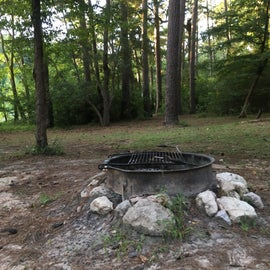 Fire ring at our site