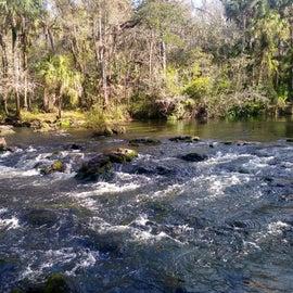 Rapids in Florida