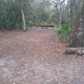 Site 65