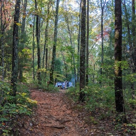 Here you can see our site through the woods, up the trail. You can see how these trails are not the easiest things to traverse, especially with heavy gear.