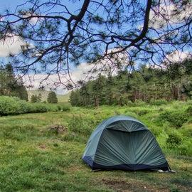 Fenton Lake campsite #1