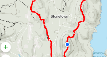 Stonetown Circular trail Primitive #1