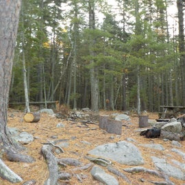 Stump chairs and lot's of rocks
