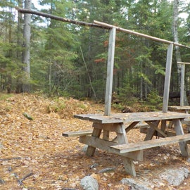 Several picnic tables dispersed in the area