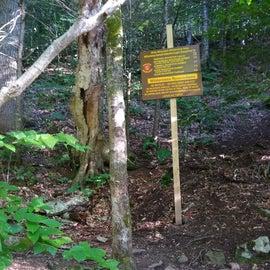 Slide Mountain Trail