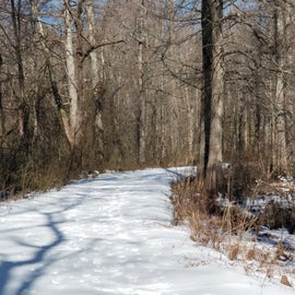 The 2 mile lake circuit trail.