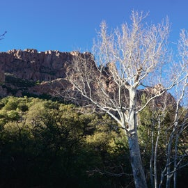 View from our campsite.