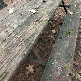 The picnic table in Site 43 had seen better days
