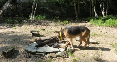 Boone Fork Campground