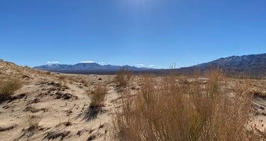 Kelso Dunes Dispersed