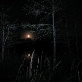 Moonrise over Burns Lake