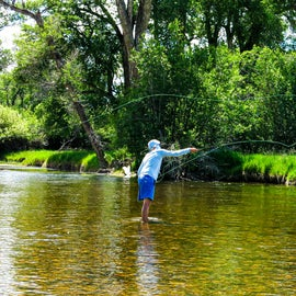Wading into the river to fish