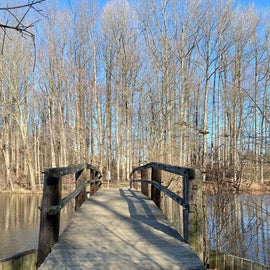Bridge along Swamp Trail on the main side of the park.