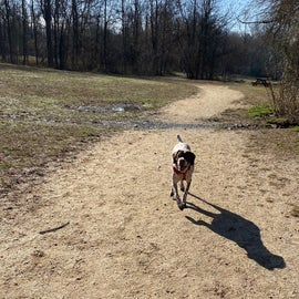 Dog Park showing the spacious area for off leash.
